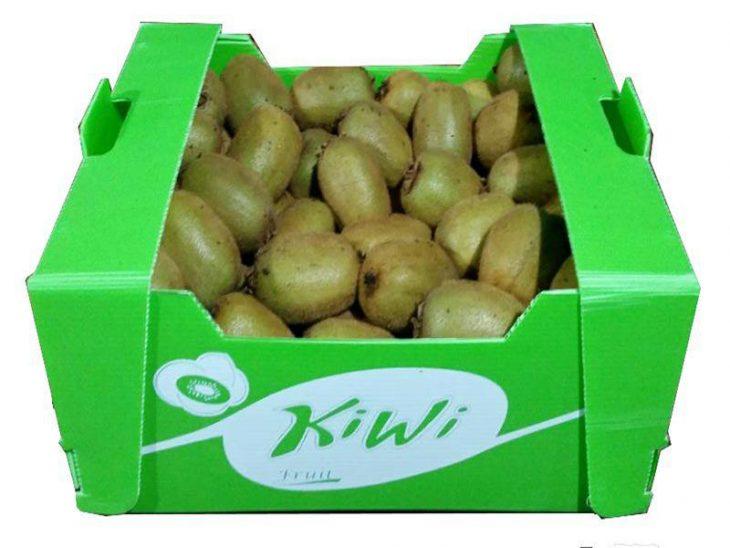 صادرات کیوی در بسته بندی کارتنی
