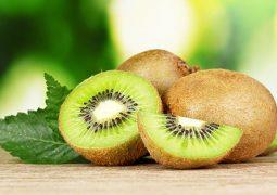 Kiwifruit 2 255x180 - خواص کیوی